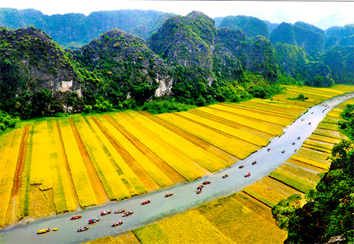 Du lịch Ninh Bình – Hoa Lư – Tam Cốc 1 Ngày Tết 2014