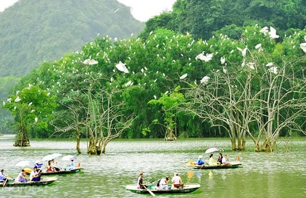 Khách du lịch ngồi thuyền thăm Vườn Chim Thung Nham với sự thích thú